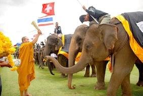 Elephant Polo Monks blessing