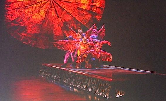 Cirque du Soleil Luzia (2)