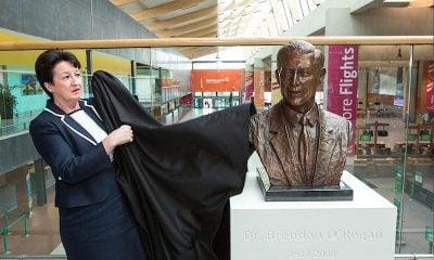 Shannon Airport Bust of Dr Brendan O'Regan